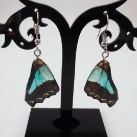 boucles d'oreilles papillons océan