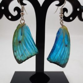 boucles d'oreilles papillons bleu