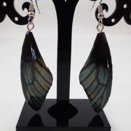 boucles d'oreilles papillons turquin