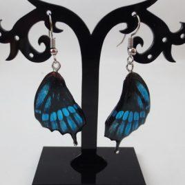 boucles d'oreilles papillons bleu roi
