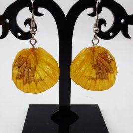 boucles d'oreilles papillons jaune