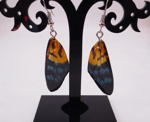 boucles d'oreilles papillons tigre