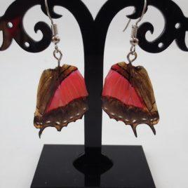 boucles d'oreilles papillons camaïeu