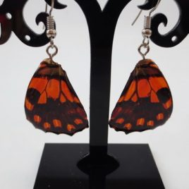 boucles d'oreilles papillons orange