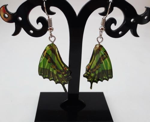 boucles d'oreilles papillons vert