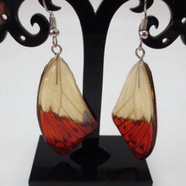 boucles d'oreilles papillons crème