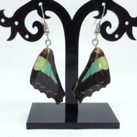 Boucles d'oreilles ailes de papillons Blou