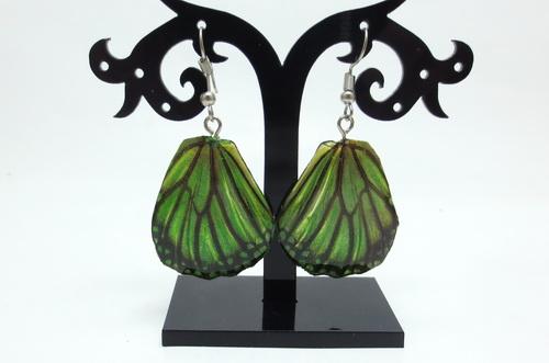 Boucles d'oreilles ailes de papillons Green